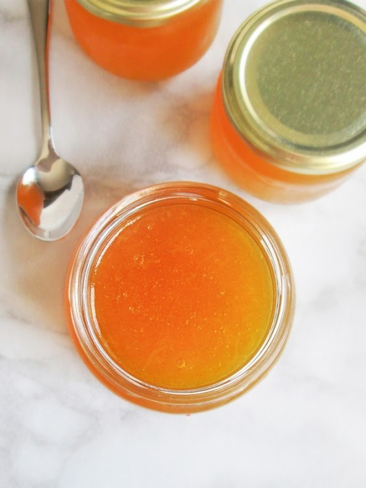 honeydew melon jelly recipe tina vesic food blog